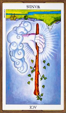 Ace of Wands (reversed)