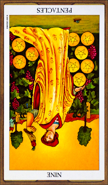 Nine of Pentacles (reversed)